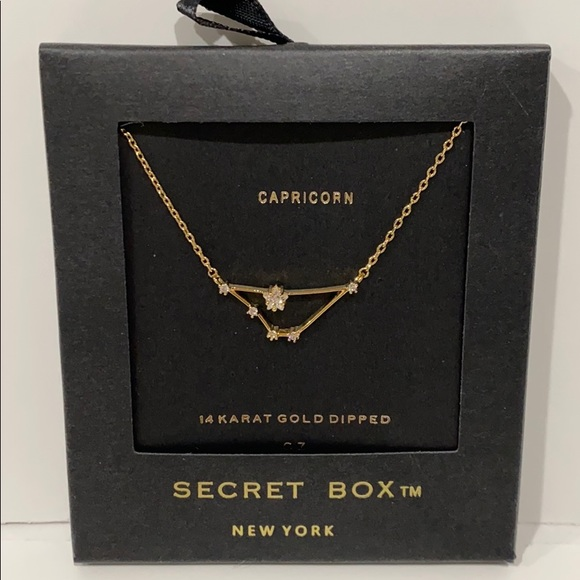 Jewelry - Capricorn Zodiac Necklace 14K Gold Dipped